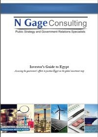 Investor's Guide to Egypt