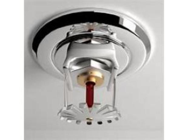 "automatic fire sprinkler systems market in Moreover, the ""automatic fire sprinkler systems market"" report assessed key market features, including price, revenue, capacity utilization rate, growth rate, capacity, production, gross, supply, consumption, cost, market share, demand, import, gross margin, export, and much more."