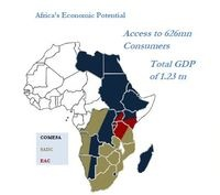 The road to African integration:Tripartite Free Trade Area