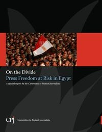 Press Freedom at risk in Egypt 2013