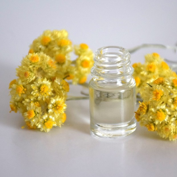 Global Immortelle Extract Market 2020 Key Drivers – Helichrysum-croatia,  Solaroma, Talia, Youngliving, Laboratoire, Moellhausen – The Daily Chronicle