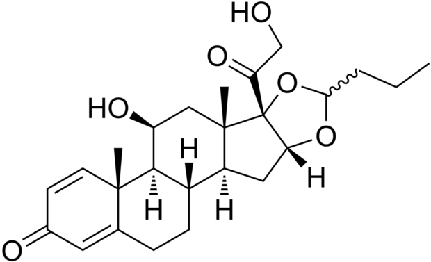 Budesonide Market Global Analysis And Forecasts 2021 By
