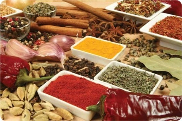 Food Flavor Enhancer Market Report - Global Industry Analysis by Type,  Regions and Application