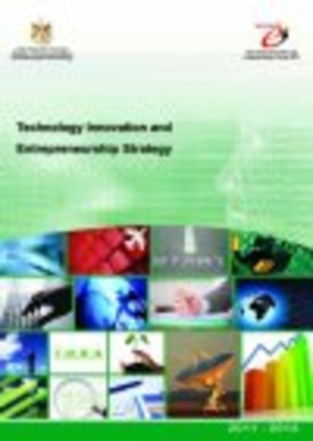 Technology Innovation and Entrepreneurship Strategy 2011 - 2014