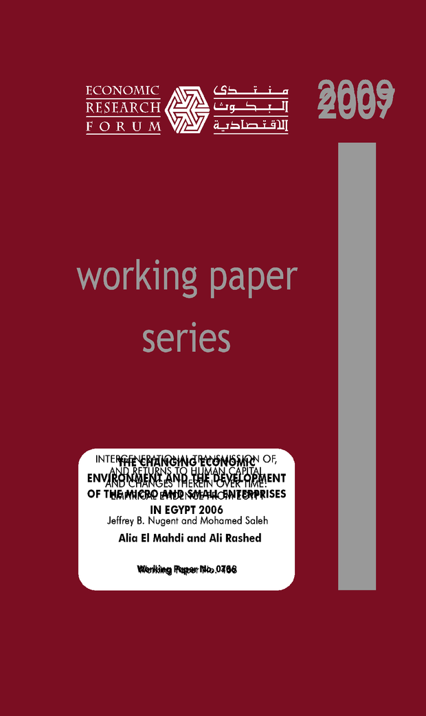 Working paper: empirical evidence from Egypt