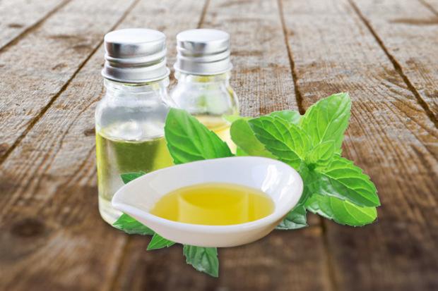 Global Carvone Market 2020 Industry Analysis – Paramount Aromachem, Shree  Bankey Behari Lal Aromatics, Renessenz, Lvchang Chemical, Gem Aromatics –  Owned