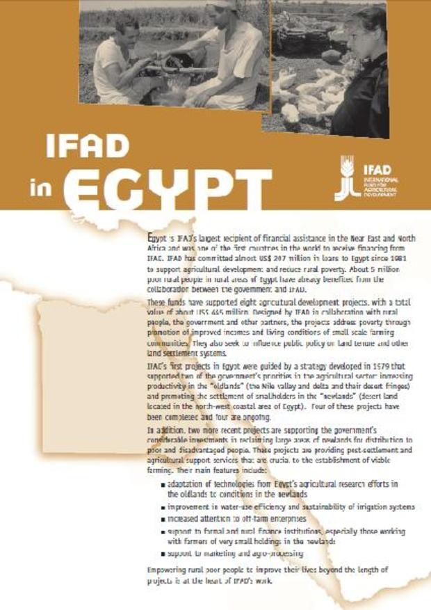 IFAD in Egypt - The facts